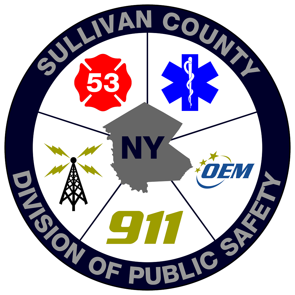 Division of Public Safety Logo